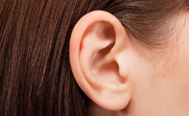 Kulak Kiri1