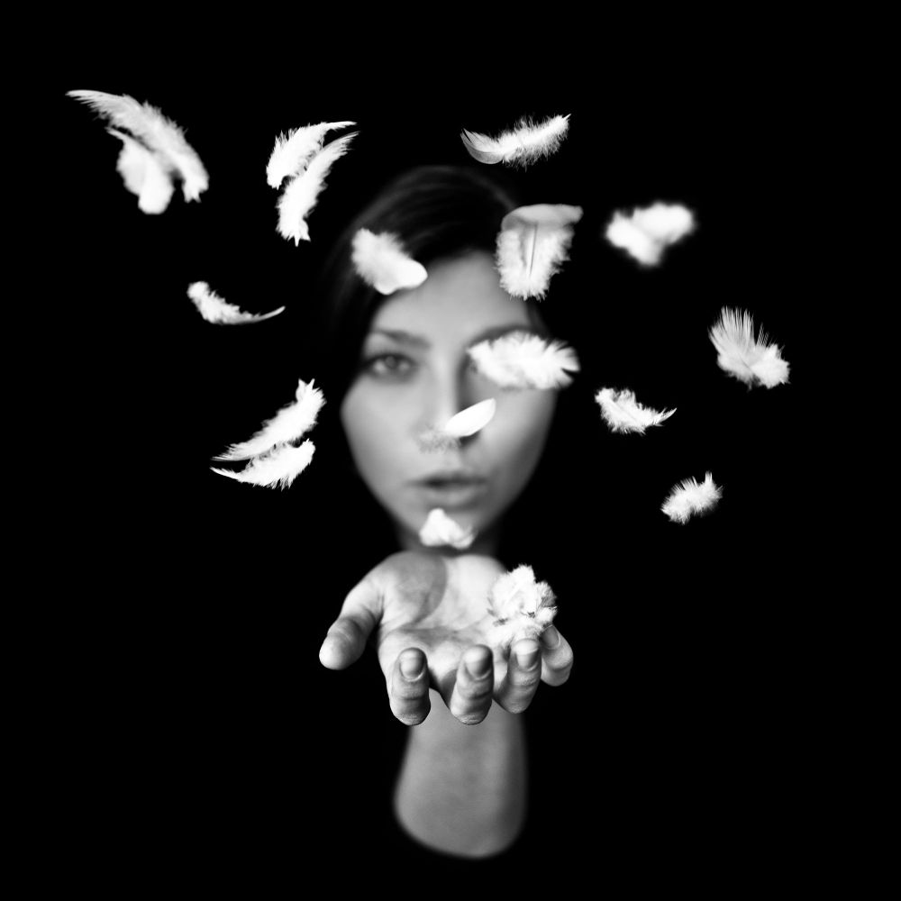 Deep Black - Plumes ©Benoit Courti