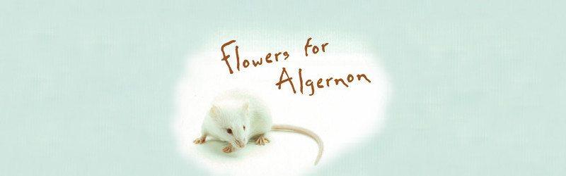 Algernon4a