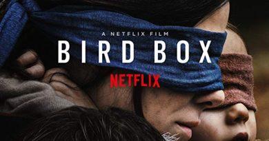 Netflix'in Yeni Filmi Bird Box (Kuş Kafesi) İncelemesi