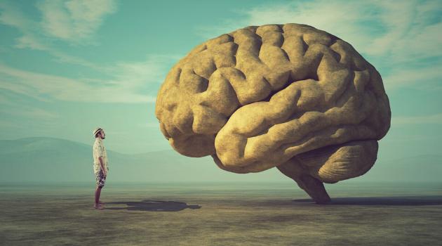 BeynimizinHeykeltraşıOlabilir Miyiz?